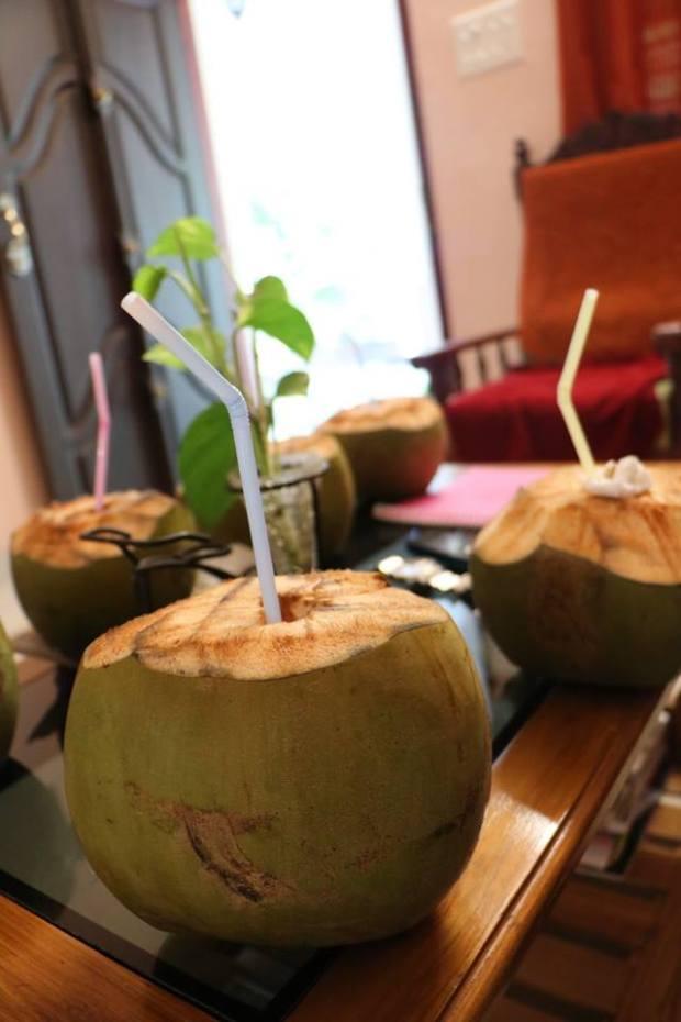 Cocco verde_India